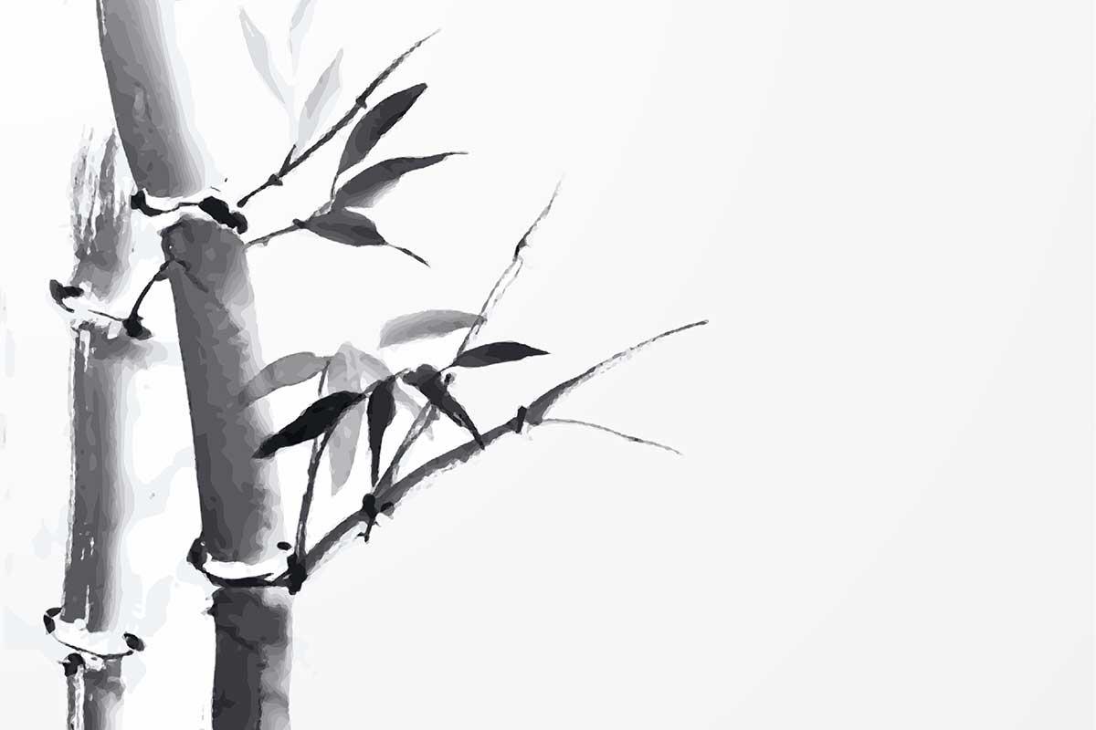 Foto Sumi E   Japanische Tuschmalerei: Bambus